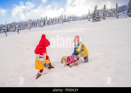 Boy and girl playing with golden retriever puppy dog in snow - Stock Photo