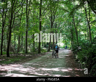 Senior man and bicycle on shady path In Tiergarten Public park in Summer, Berlin - Stock Photo