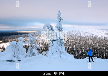 Heavy snow on the Salla fell. Salla ski resort. Deep in the wilderness of heavily snow laden coniferous trees and - Stock Photo