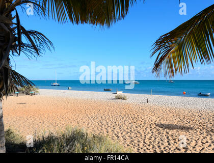 Monkey Mia, Western Australia, WA, Australia - Stock Photo