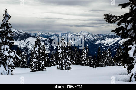 View of  from the Elfin Lakes trail, Garibaldi Park, BC - Stock Photo