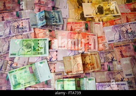 The animal and nature themed banknotes of the country of Uganda - Stock Photo