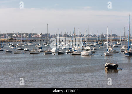 Marina Montevideo Uruguay - Stock Photo