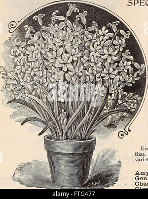 Dreer's wholesale price list summer edition July to August 1900 - seasonable flower and vegetable seeds, fertilizers, - Stock Photo
