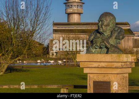Sir Peter Scott sculpture at Slimbridge - Stock Photo