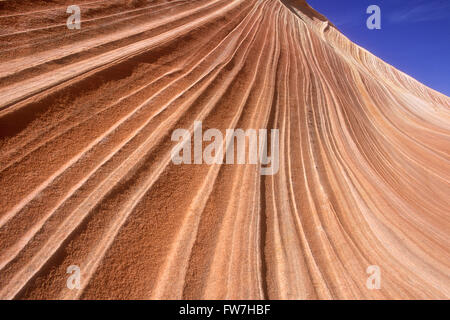 The Wave, Paria Canyon-Vermillion Cliffs Wilderness, Arizona, U.S.A. - Stock Photo
