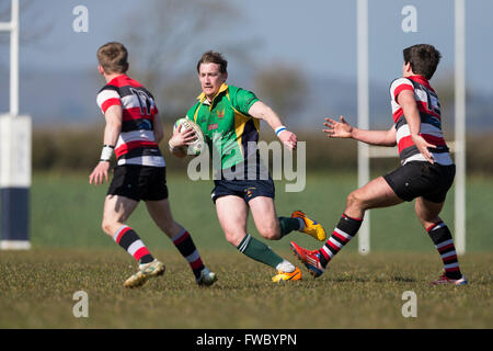NDRFC 1st XV versus Frome RFC 1st XV,  Will Gibbs of NDRFC in action - Stock Photo