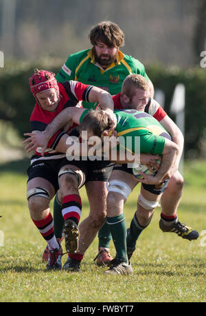 NDRFC 1st XV versus Frome RFC 1st XV,  David marsh of NDRFC being tackled. - Stock Photo