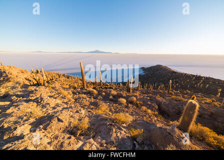 Wide angle view of the Uyuni Salt Flat, among the most important travel destination in Bolivia. Shot taken at sunrise - Stock Photo