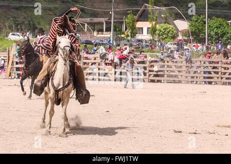Banos, Ecuador - 30 November 2014: Young Courageous Cowboy Riding A Horse And Throwing A Lasso, South America In - Stock Photo