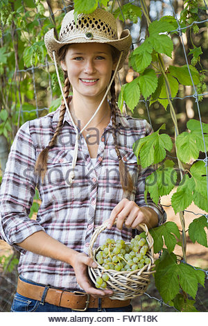 Young woman holding freshly harvested grapes in basket - Stock Photo