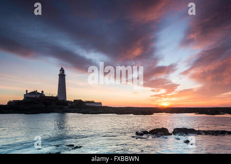 St. Mary's Lighthouse in the morning light. There is a siluette of a man walking on the path against the sun - Stock Photo