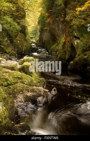 Fairy Glen, near Betws-y-Coed, Gwynedd, North Wales - Stock Photo