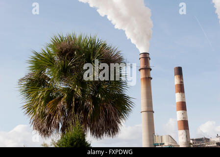 Smokestacks emitting fumes near palm tree - Stock Photo