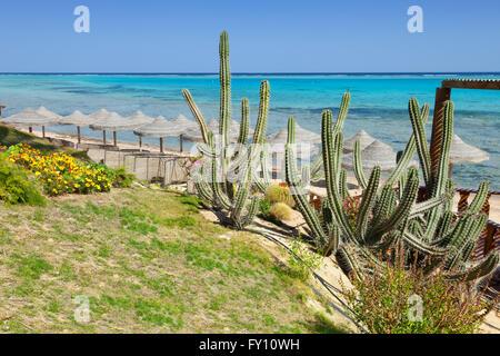 beach and sea in Marsa Alam, Red Sea, Egypt - Stock Photo