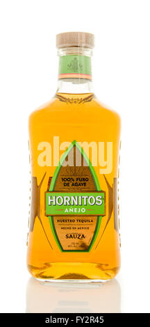 Winneconne, WI - 19 March 2016:  A bottle of Hornitos anejo tequila - Stock Photo