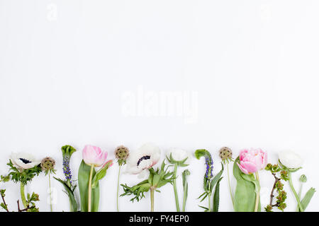 Pink tulips, white anemones, pink cloves and white buttercups lying on white background in a row - Stock Photo