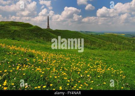 The Lansdowne monument on Cherhill hill (Oldbury castle), a distinctive landmark on the Wiltshire downs. - Stock Photo