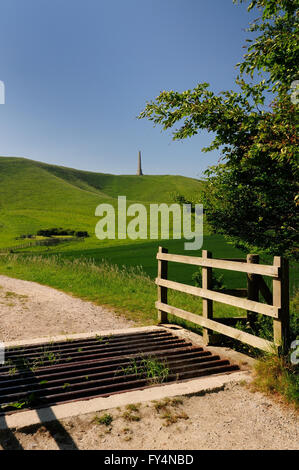 Cattle grid leading to the Lansdowne monument on Cherhill hill (Oldbury castle), a distinctive landmark on the Wiltshire - Stock Photo