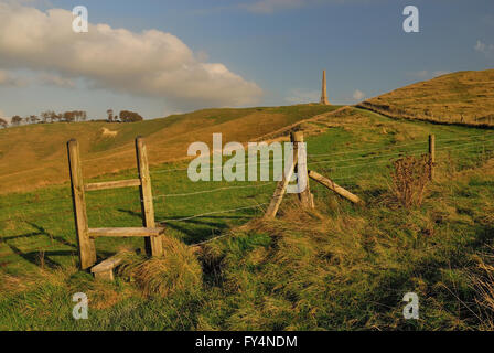 The Lansdowne monument and white horse on Cherhill hill (Oldbury castle), a distinctive landmark on the Wiltshire - Stock Photo