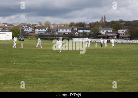 English game of cricket being played on a local village ground - Stock Photo