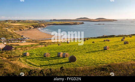 Hay bales in a field above Whitesands Bay looking across to Ramsey Island taken from Carn Llidi path on the north - Stock Photo