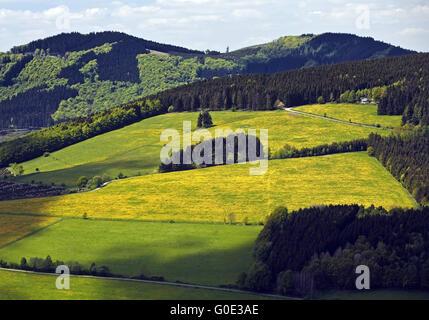 low mountain scenery near Bruchhausen, Olsberg - Stock Photo