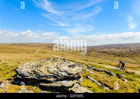 Cyclist on track across the Bowland Fells Lancashire variously known as Salter's Way Salter Fell Road or Hornby - Stock Photo