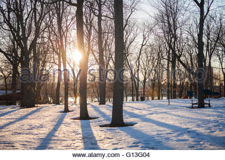 Park on ile st helene during winter, Montreal, Quebec, Canada - Stock Photo