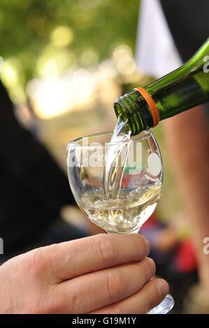 Man pours white wine into a glass - Stock Photo