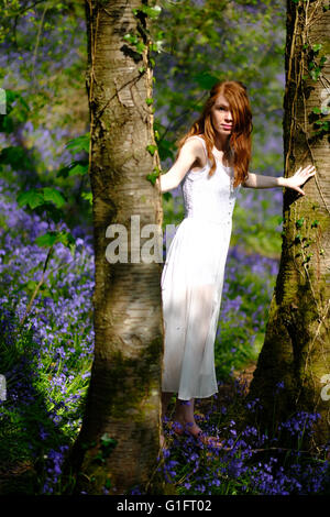A slender red-haired young woman in a long white dress standing between two tree trunks in a woodland with spring - Stock Photo
