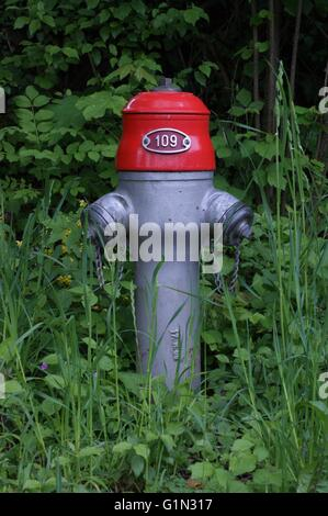 Fire hydrant in Switzerland bearing number 109 - Stock Photo