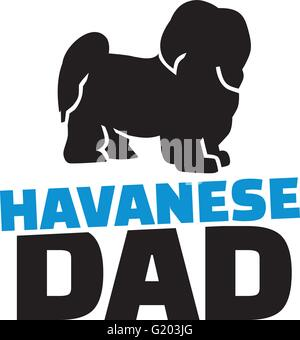 Havanese dad with dog silhouette - Stock Photo