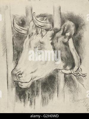 Head of a cow, print maker: Gijsbertus Craeyvanger, 1836 - Stock Photo