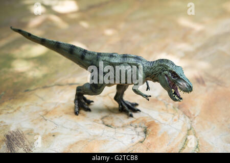tyrannosaurus toy standing on rock - Stock Photo