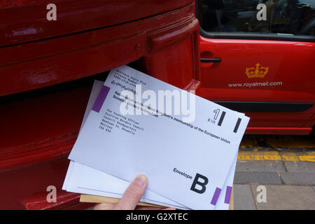 Postal votes for the EU membership referendum go into a post box in Scotland - Stock Photo