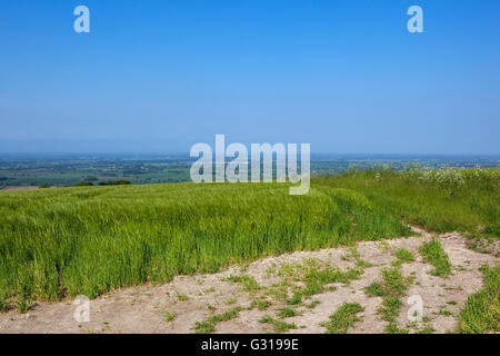 Patchwork landscape of the vale of York viewed across a hilltop barley field high on the Yorkshire wolds under a - Stock Photo
