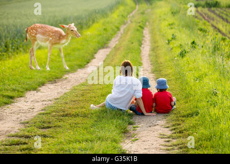Young mother with her two children watching young foe in a spring blooming field on sunset, rural scene - Stock Photo