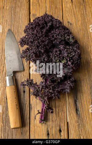 Redbor kale with Japanese knife - Stock Photo
