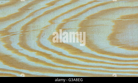 Part of Larch tree wood texture - Stock Photo