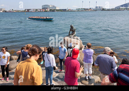 Copenhagen Harbour, Denmark. 25th June, 2016. The Little Mermaid at Langelinie was much courted today. A new record - Stock Photo