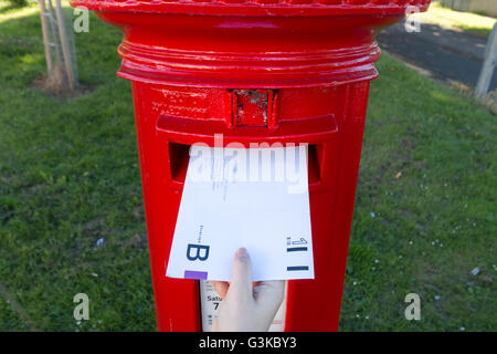 A UK postal vote being put into a post box. - Stock Photo