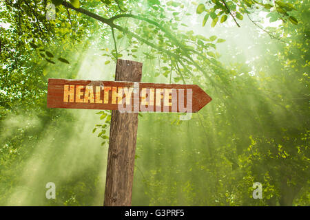 Sign with Healthy Life Text on Green Forest. - Stock Photo