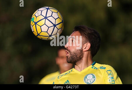 Sao Paulo, Brazil. 06th July, 2016. TRAINING OF TREES - The Allione player, SE Palmeiras, during training, the Football - Stock Photo