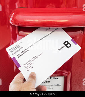 Postal voting in the UK European election - Stock Photo