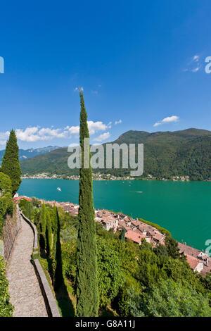 View over Morcote towards Lake Lugano, Cypress (Cupressus), Lago di Lugano, Ticino, Switzerland, Europe - Stock Photo