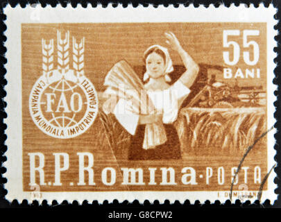 ROMANIA - CIRCA 1963: A stamp printed in Romania shows agricultural worker with the inscription 'FAO - Global campaign - Stock Photo