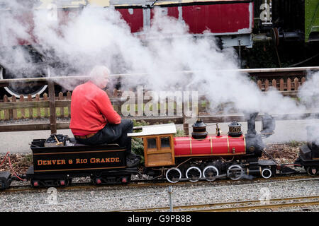 Man driving miniature railway steam train engine in Conwy Valley Railway Museum. Betws-y-Coed, North Wales, UK, - Stock Photo