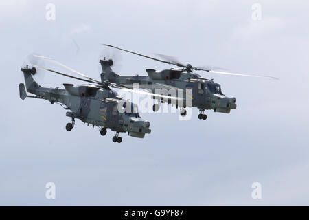 RNAS Yeovilton, Somerset, UK. 2nd July, 2016. Yeovilton Based Black Cats Helicopter Display team flying a pair of - Stock Photo