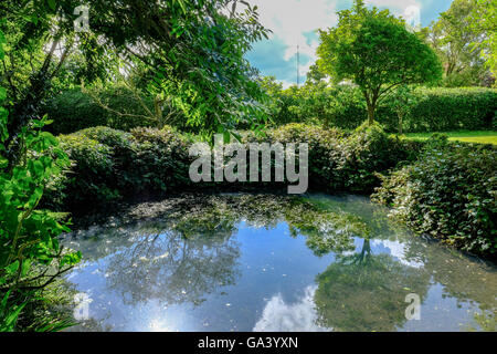 Old, WW2 bomb crater, now a large pond in a private garden as seen in early summer. - Stock Photo